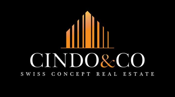 LogoCindoweb